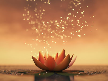 Lotus 2.jpeg