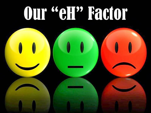 Our eH Factor.jpg