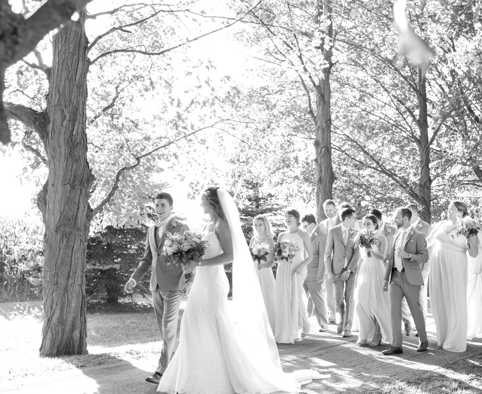 black and white photo of wedding party walking down tree lined laneway