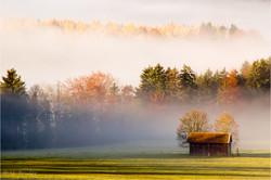 Nebel bei Thalham