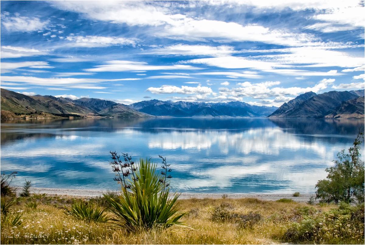 NZ paradise