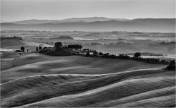 Tuscany evening light