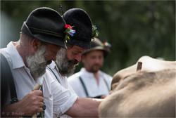 Bavarian herdsmen III