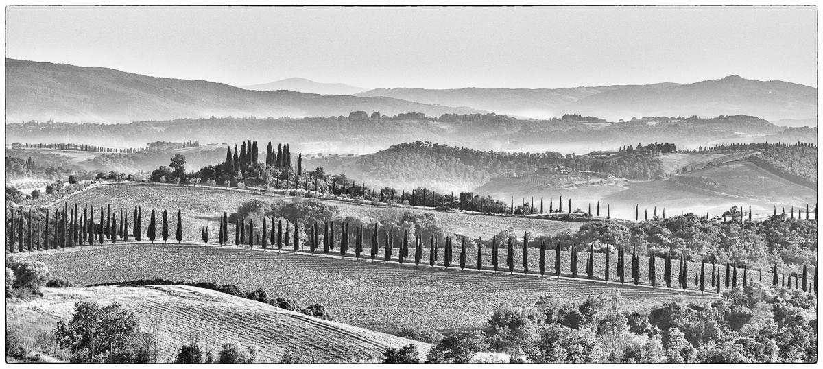 Tuscany lines