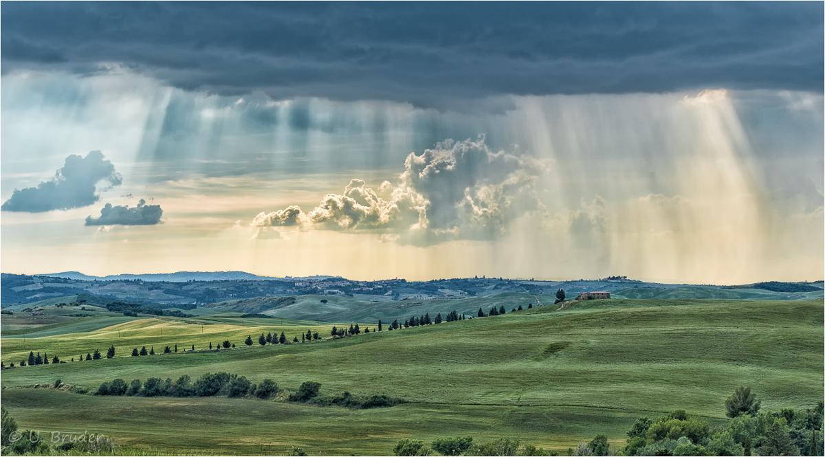 Tuscany Rain
