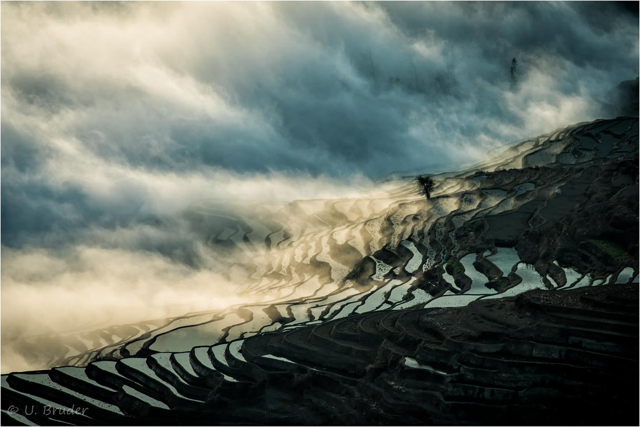 Mystical terraces