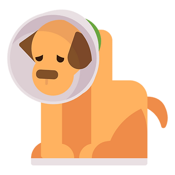 sick-puppy-illustration.png
