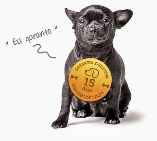 34080536-0-garantia-dog.jpg