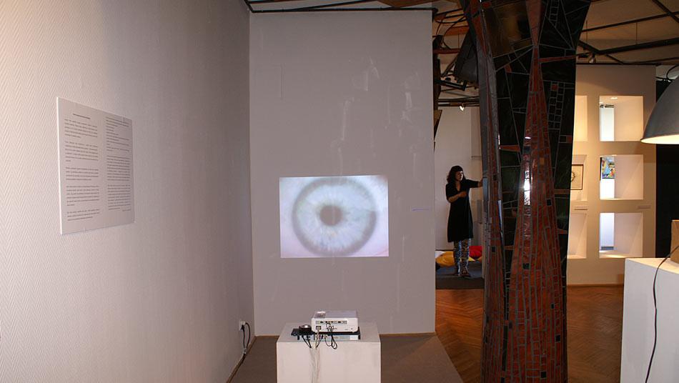 Tomasz Madajczak, Homopotencjalis, projekcja/wideoperformans 2008, fot. Helena Wojciechowska
