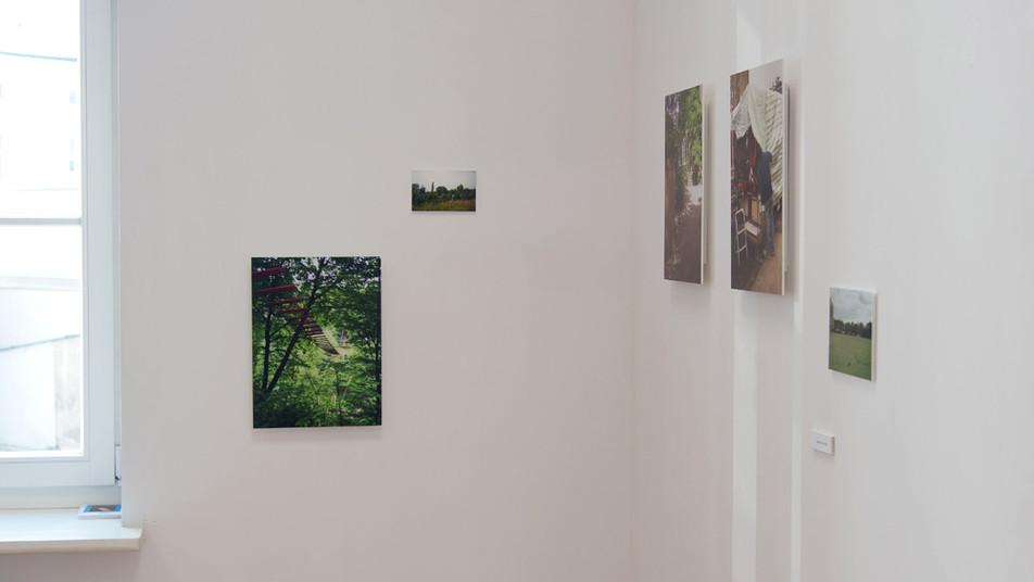 Joanna Tekla Woźniak, fotografia, Poznańska Galeria Nowa, Poznań listopad 2011