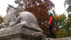 W Poszukiwaniu Wolnych Zwierząt w Mieście, kadr wideo, Monachium listopad 2005