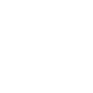 ACEFACE-LOGO-white.png