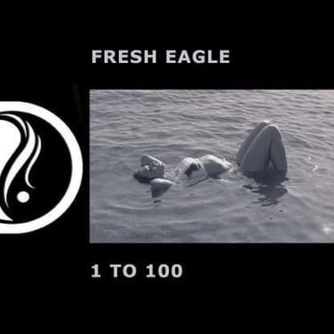 Fresh Eagle - 1 to 100