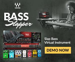 Waves Bass Slapper