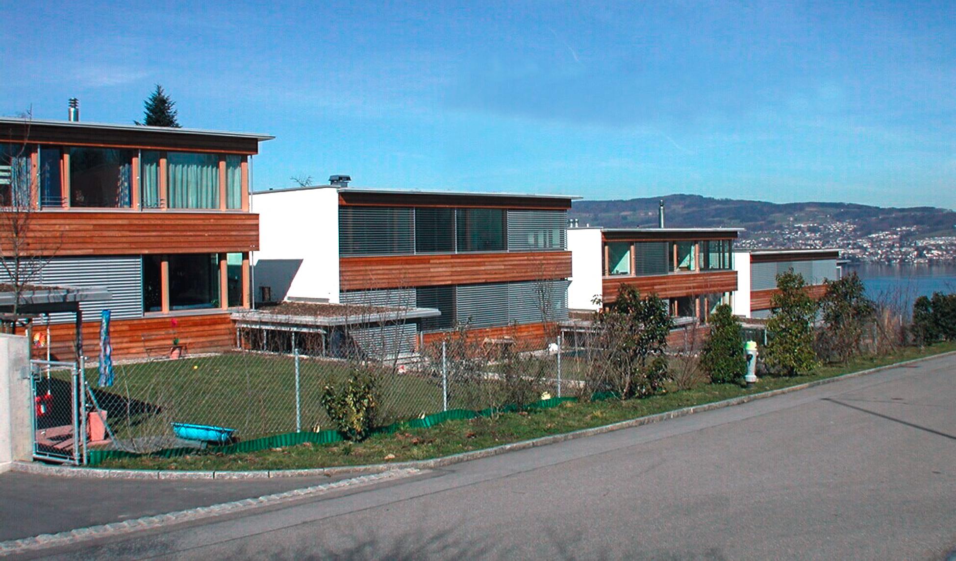 Überbauung Grüntal, Wädenswil