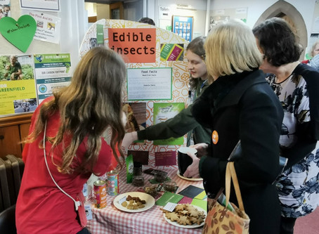 Local Project: George and India's eco-stalls!