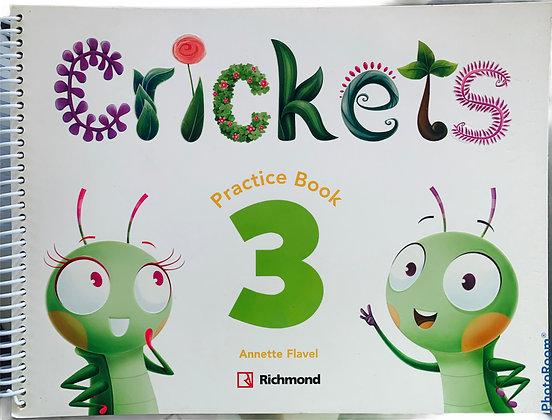 Crickets Practice Book 3