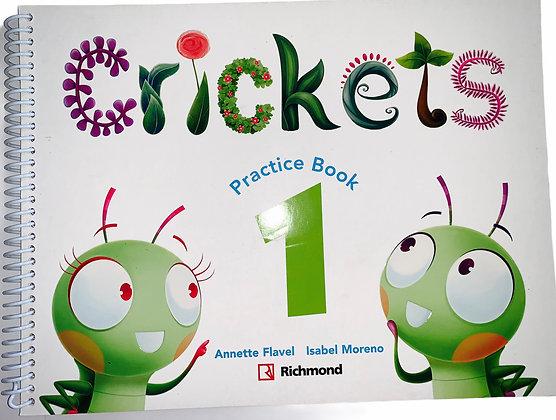 Crickets Practice Book 1