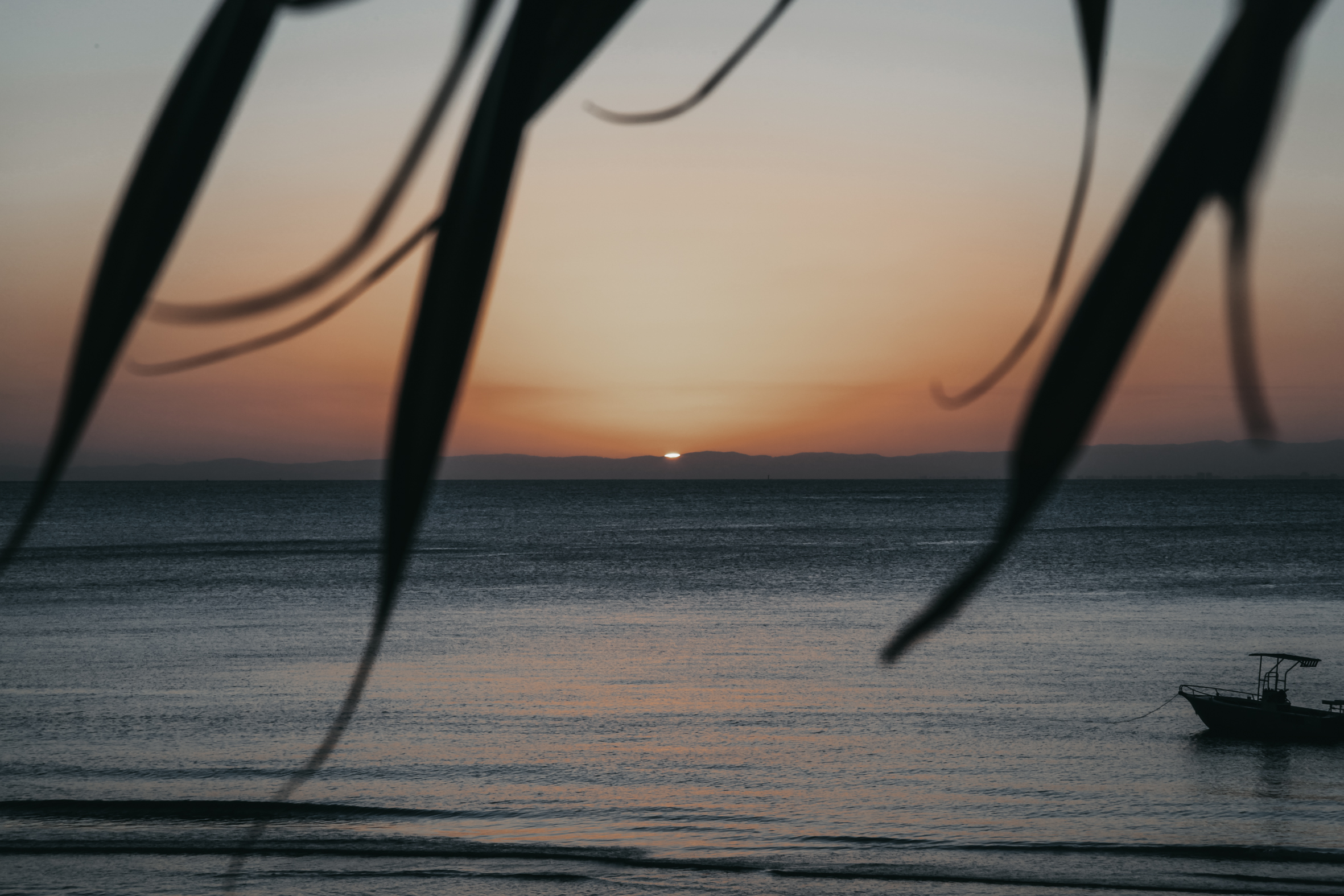 Moreton Bay | East Australia