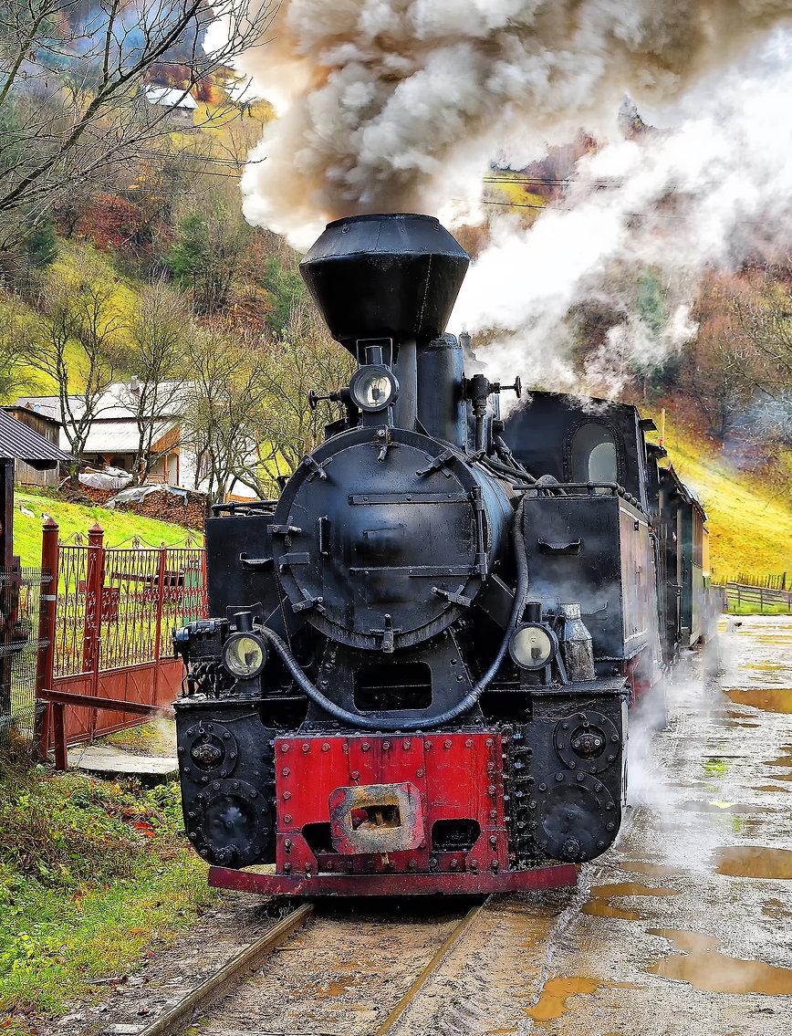 Running wood-burning locomotive of Mocan