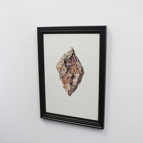 ドイツ鉱物画Erythrite