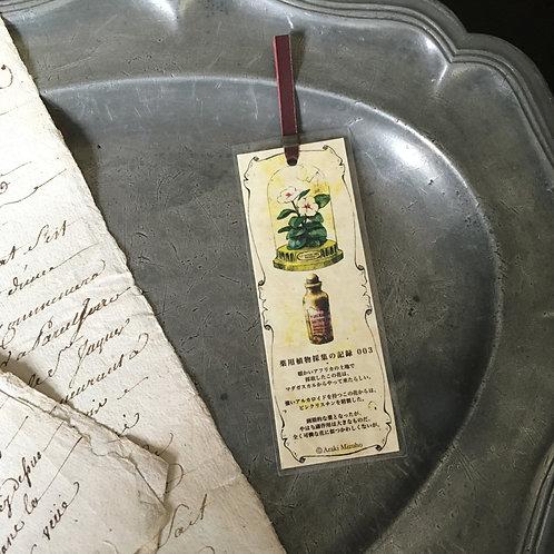 しおり 薬用植物採集の記録003
