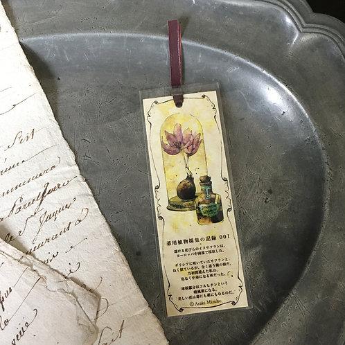 しおり 薬用植物採集の記録001