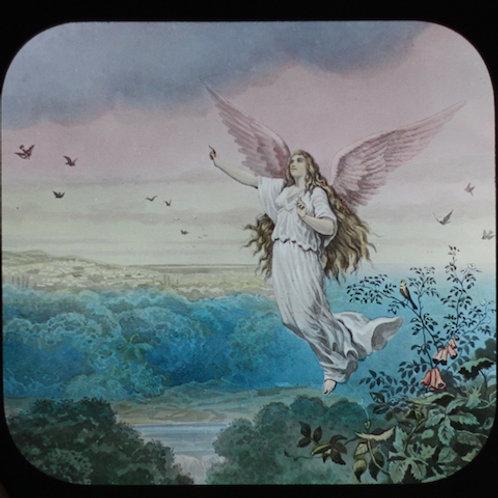幻灯機スライド 天使