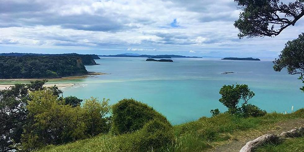 Spring cruise - Tesla Auckland to Wenderholm