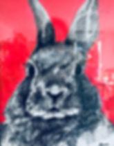 Peinture Acrylique lapin