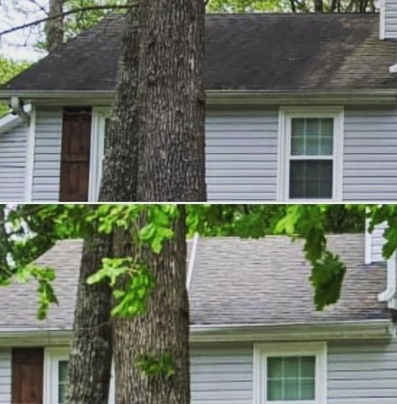 BEFORE AND AFTER ROOF CLEANING