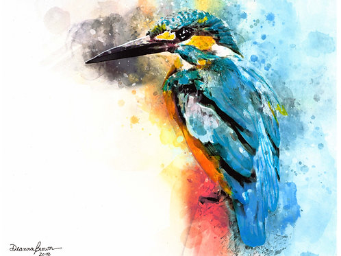 Kingfisher (Original)