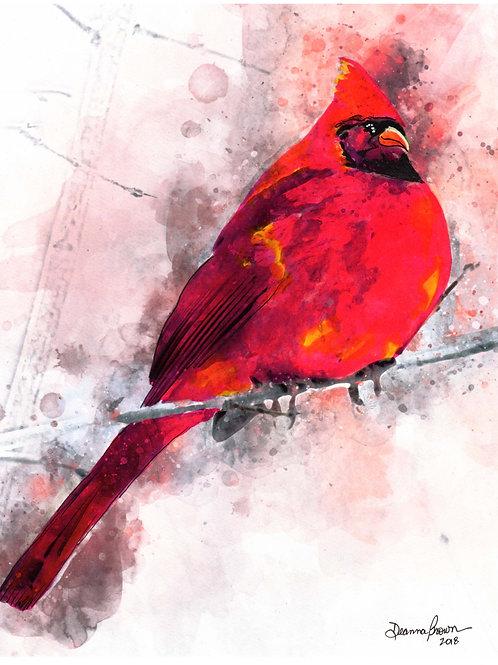 Cardinal (Limited Edition)