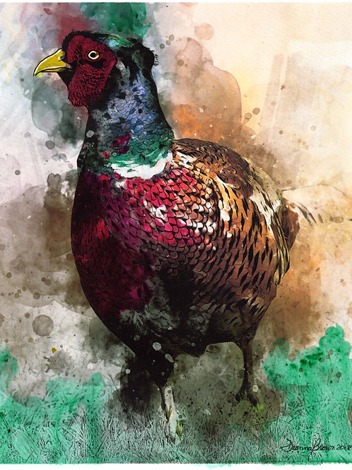 Pheasant (Limited Edition)