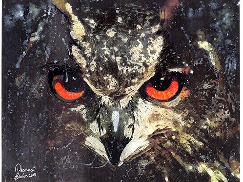Owl (Original)