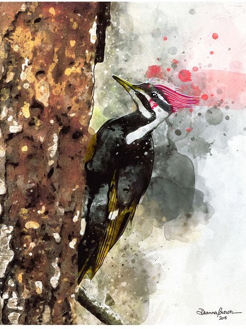 Woodpecker (Limited Edition)