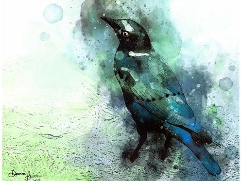 Starling (Original)