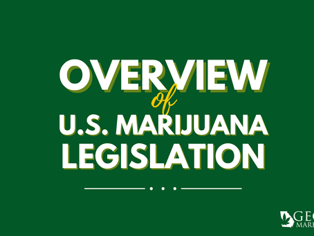 National Overview: What are the Results of Marijuana Policy Reform?