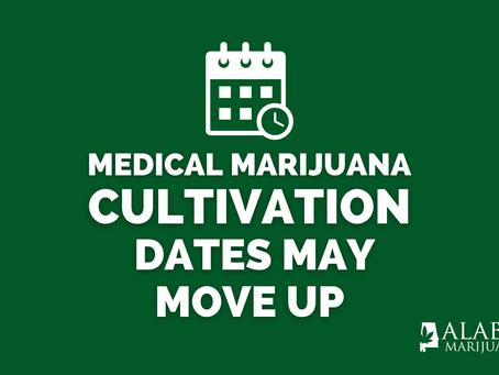 Alabama Hires Cannabis Commission Director, Discusses Cultivating Medical Marijuana Sooner