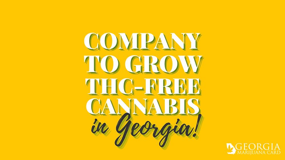 company to grow thc-free cannabis in Georgia