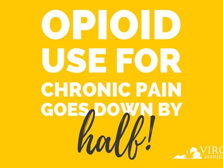 New Study: Nearly Half of Medical Marijuana Users Cease Using Opioids After Twelve Months
