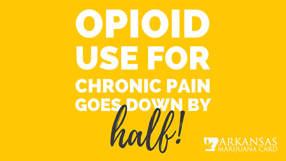 opioid use for chronic pain goes down by half