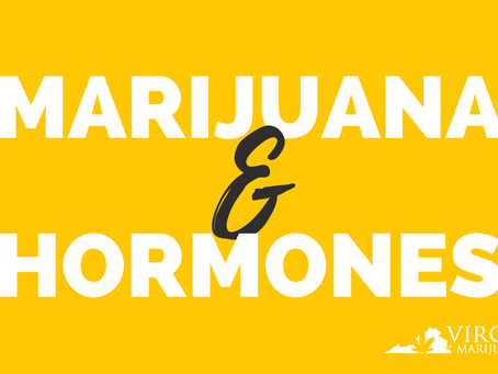 How Does Marijuana Affect Hormones?