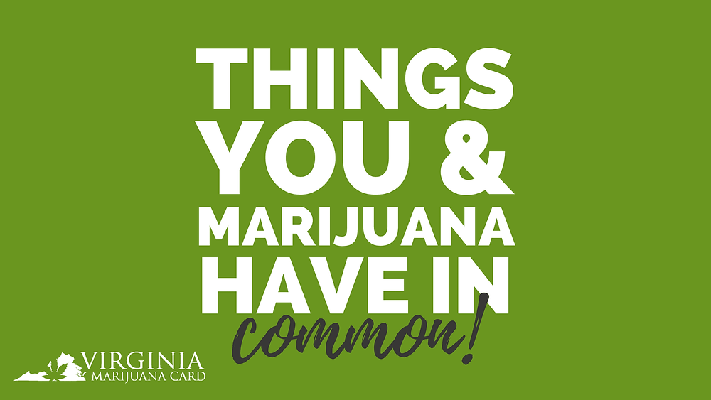 Things You & Marijuana have in common