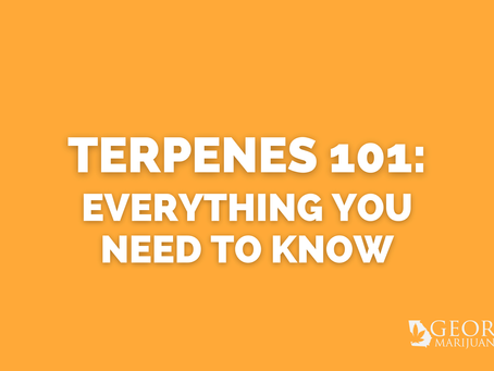 Georgia Marijuana Card Guide: Terpenes 101