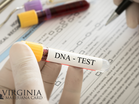 DNA Test Shows Which Marijuana Products Will Work Best For You