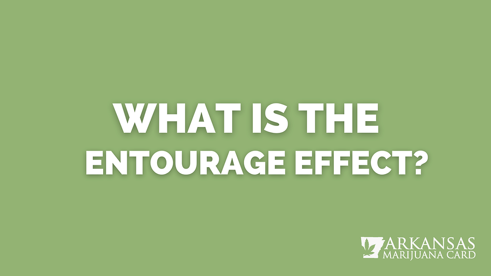 What Is The Entourage Effects?