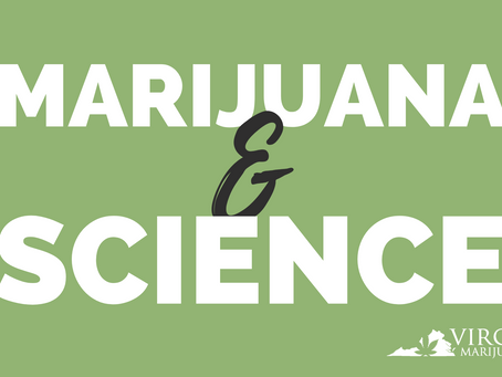 How Marijuana Interacts With Our Bodies