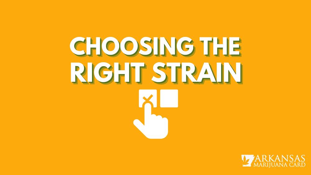 Choosing the right strain