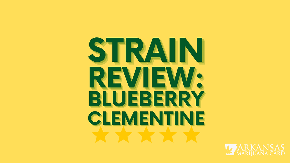 strain review blueberry clementine